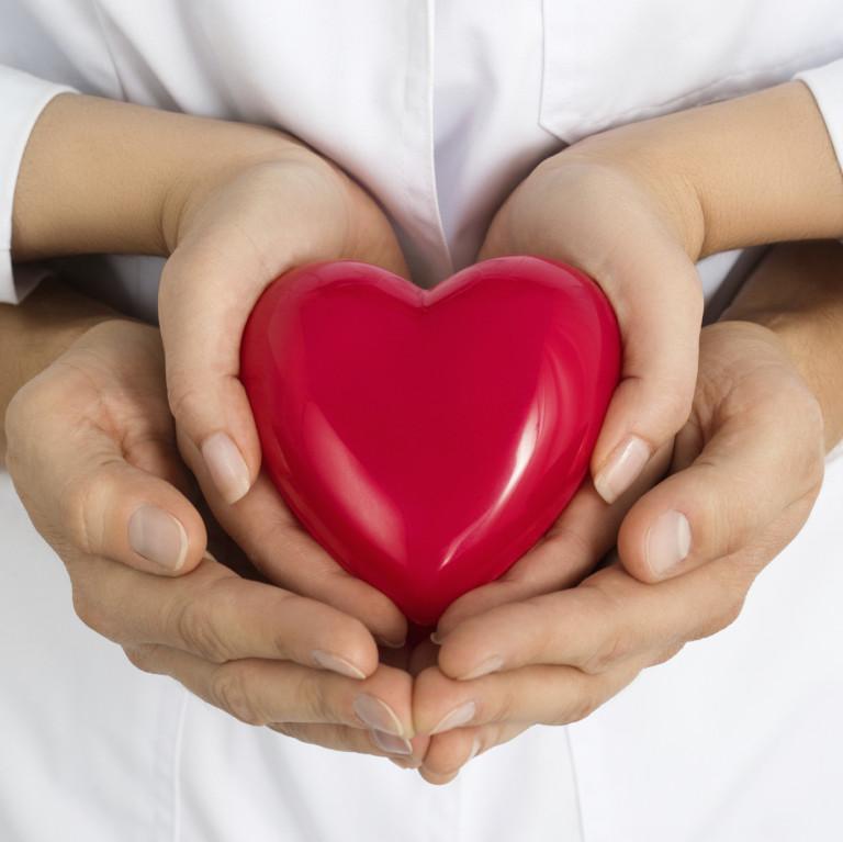 gastvrijheid training hart in handen webshop